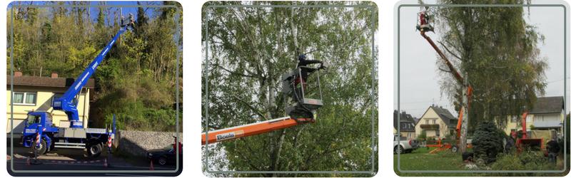 Die Baumpflege Koblenz hat technische Hilfsmittel zur Baumpflege.